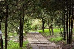 Parco fotografato della molla Fotografia Stock Libera da Diritti