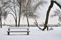 Parco in gennaio Fotografie Stock