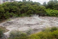 Parco geotermico di Taupo Fotografia Stock