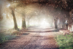 Parco Gussone Royalty Free Stock Photography