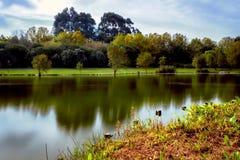 Parco HDR del lago Fotografia Stock Libera da Diritti