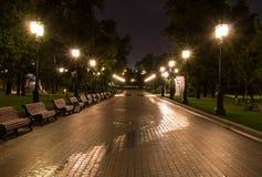 Parco illuminato della città alla notte di estate fondo, vita di città Fotografia Stock