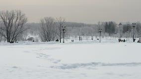 Parco innevato 1 di inverno stock footage