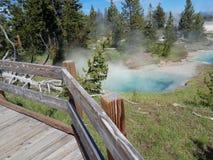 Parco internazionale degli S.U.A. Yellowstone fotografie stock libere da diritti