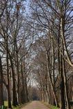 Parco Lambro Royalty-vrije Stock Foto