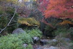 Parco Lithia Ashland, Oregon immagine stock libera da diritti