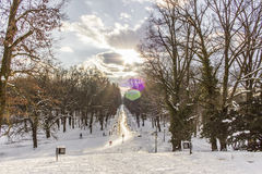 Parco Maksimir Zagabria, inverno della città fotografia stock libera da diritti