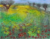 Parco, natura, alberi, erba e un campo in pieno di Poppy Flowers Immagine Stock