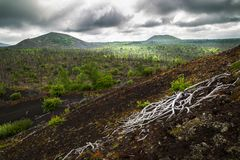 Parco naturale immagine stock libera da diritti