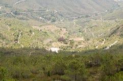 Parco naturale del deserto delle palme Fotografia Stock
