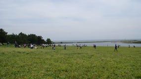Parco naturale di conservazione di Rinkai del Kasai di Tokyo Immagine Stock