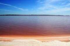 Parco naturale di Mata y Torrevieja della La di Lagunas de Immagine Stock