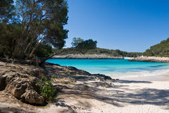 Parco naturale di Mondragon di Mallorca Balearic Island fotografia stock