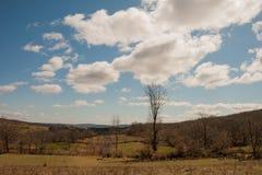 Parco naturale di Montesinho Fotografia Stock