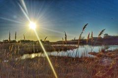 Parco naturale di vista di beatitudine di inverno grande immagini stock libere da diritti