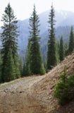 Parco naturale in montagne di Colorado Fotografia Stock