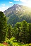 Parco naturale Riesenferner nelle alpi delle dolomia, Tirolo del sud, Italia Fotografia Stock Libera da Diritti