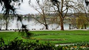 Parco naturale vicino al lago video d archivio