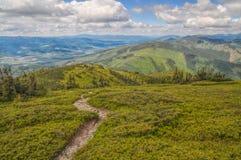 Parco nazionale basso di Tatras Immagini Stock