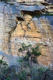 Parco nazionale blu delle montagne, NSW, Australia Immagini Stock
