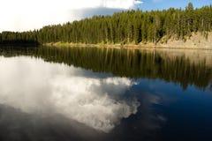 Parco nazionale calmo di riflessione dell'alta nuvola del fiume Yellowstone Fotografia Stock Libera da Diritti