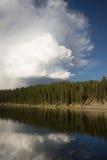 Parco nazionale calmo di riflessione dell'alta nuvola del fiume Yellowstone Fotografia Stock