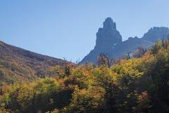Parco nazionale Cerro Castilloe strada principale australe, peperoncino rosso, XI regione di Aysen patagonia fotografia stock
