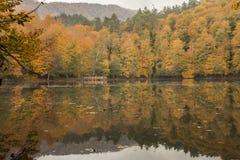 Parco nazionale dei laghi Yedigöller - di Bolu sette Fotografia Stock
