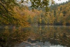 Parco nazionale dei laghi Yedigöller - di Bolu sette Fotografie Stock