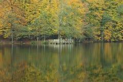 Parco nazionale dei laghi Yedigöller - di Bolu sette Immagine Stock Libera da Diritti