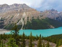 Parco nazionale del lago blu luminoso Peyto, Banff Immagini Stock Libere da Diritti