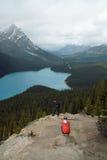 Parco nazionale del lago Peyto, Banff, Alberta, Canada. Immagini Stock Libere da Diritti
