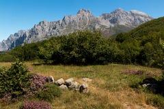 Parco nazionale dell'europa di Picos da Fotografie Stock Libere da Diritti