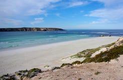 Parco nazionale della baia della bara, penisola di Eyre Fotografia Stock