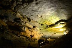 Parco nazionale della caverna del mammut, U.S.A. Fotografia Stock