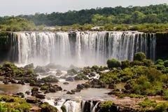 Parco nazionale delle cascate di Iguazu Immagini Stock