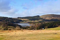 Parco nazionale Devon di dartmoor di Sheepstor Fotografia Stock
