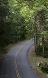 Parco nazionale 485 di acadia Fotografia Stock