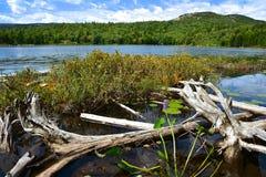 Parco nazionale di acadia Fotografie Stock Libere da Diritti