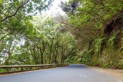 Parco nazionale di Anaga Immagine Stock Libera da Diritti