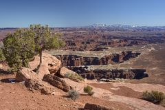 Parco nazionale di Canyonlands fotografia stock libera da diritti