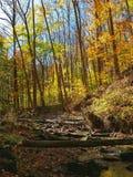 Parco nazionale di Cuyahoga in autunno Fotografia Stock