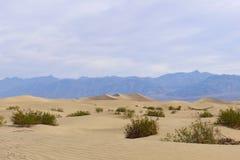Parco nazionale di Death Valley Fotografie Stock Libere da Diritti