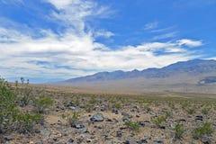 Parco nazionale di Death Valley Immagini Stock Libere da Diritti