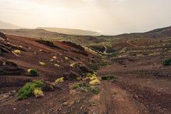 Parco nazionale di EL Teide, Provinz Santa Cruz de Tenerife, Spagna, 2017 fotografie stock libere da diritti