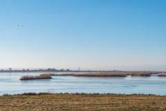 Parco nazionale di Ferto-Hansag con la torre dell'allerta, Ungheria Immagine Stock Libera da Diritti