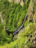 Parco nazionale di Garajonay Fotografia Stock