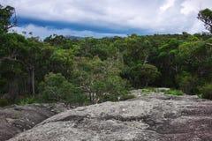 Parco nazionale di Girraween fotografia stock libera da diritti