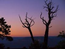 Parco nazionale di Grand Canyon dall'orlo del sud in Arizona Fotografia Stock Libera da Diritti