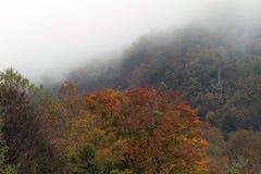 Parco nazionale di Great Smoky Mountains Immagini Stock Libere da Diritti